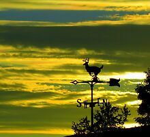 Weathervane Sunset by Debbie Robbins