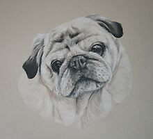 Cecil, Pug Portrait by Stephanie Greaves