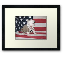 I Am Made In America Framed Print