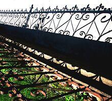 Iron Shadow by Steve Walser