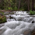 Spring Runoff II by David Kocherhans