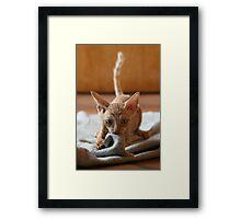 Smeagol Framed Print