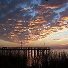 Halloween Sunset over Mobile Bay by AnitaHavel