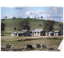 Ye Olde Aussie Shearing Quarters Poster