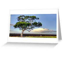 An Aussie Gumtree Greeting Card