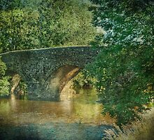 Exe Bridge by Catherine Hamilton-Veal  ©