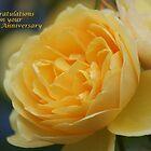 Golden Rose by Sally J Hunter
