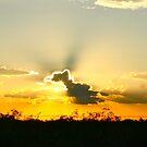 Arizona Sunset... by RichImage