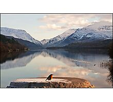 From a robin's point of view Snowdonia Wales Photographic Print