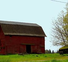 Another Beautiful Old Barn by Patricia  Butler