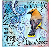 Spring Songs Photographic Print
