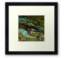 Eye of the Crocodile III [Print & iPad Case] Framed Print