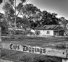 Coys Diggings by Leigh Monk