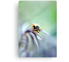 To bee or not to bee? Canvas Print