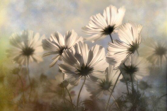 Textured Garden by Dianne English
