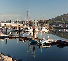 Dingle Peninsula, West Ireland by Ewa Zagorska