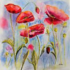 Poppies by Denise Hammond-Webb