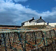 Lobster Pots ~ Lyme Regis Harbour by Susie Peek