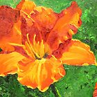 Orange Day Lily by Marilyn Healey