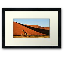 Dunes, Dead Tree & Dry Tsauchab River Valley, Namibia  Framed Print