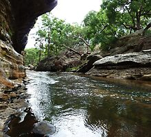 The Drip Gorge, Goulburn River, NSW by DashTravels
