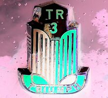 TR3 detail by ©The Creative  Minds