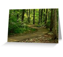 Path of Sunlight Dancing Greeting Card