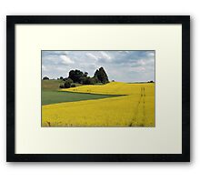 Pathway in rapeseed field Framed Print