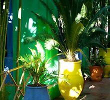Colouful Pot Plants by DuanesMind