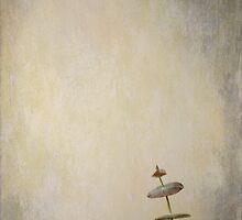 Pirouette by Anne Staub
