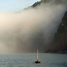 Racing Home from the Fog by saxonfenken