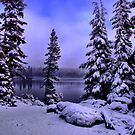 Big Lake Winters Day by Charles &amp; Patricia   Harkins ~ Picture Oregon