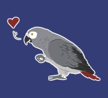 African Grey Love by Danelle Malan