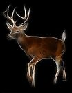 Medicine Wheel Totem Animals by Liane Pinel- Deer by Liane Pinel