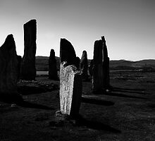 Older than Stonehenge by Michael Treloar