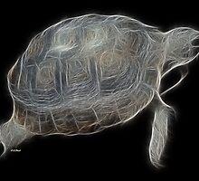 Medicine Wheel Totem Animals by Liane Pinel- Tortoise by Liane Pinel