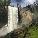 Vernal Falls by Barbara  Brown