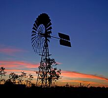 Windmill in sunset by Carmel Williams