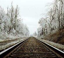 Train Ride Through an Icy Landscape by Christopher Hignite