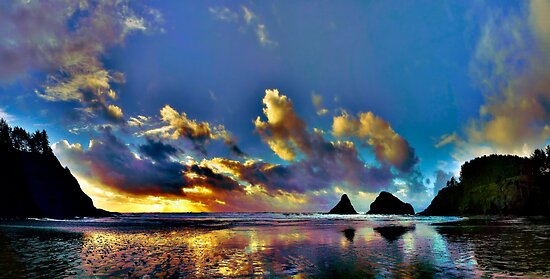 Oregon Coast Sunset by Charles & Patricia   Harkins ~ Picture Oregon