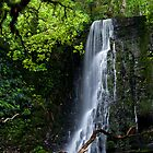 Matai Falls Moment - Catlins New Zealand by Norman Repacholi
