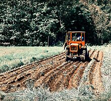 Field. Tractor. Let There Be Potatoes!! by tutulele