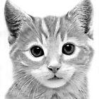 Kitten by Ronny Hart