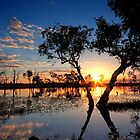 Billabong Sunset by Jodie Williams