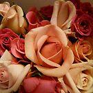 Plethora of Pink by DEB CAMERON
