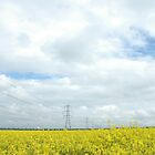 """Rapeseed and Towers"" by Jimmy Deas"