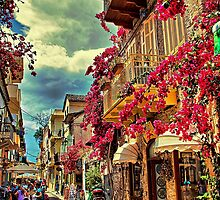 Greece. Town of Nafplio. by vadim19