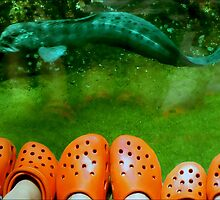 Crocs Are Recycled! by paintingsheep