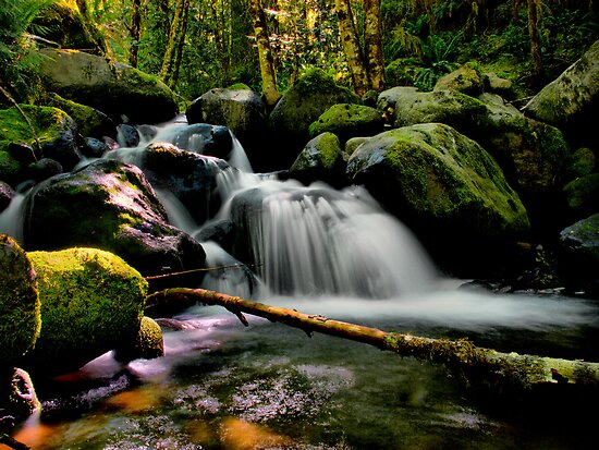 Wow (Canyon Creek) by Charles & Patricia   Harkins ~ Picture Oregon