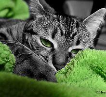 Greenie by Heather King